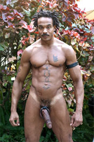 Rock gay porn star
